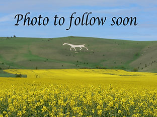 photo to follow.jpg