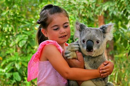 Koala park 5 min away