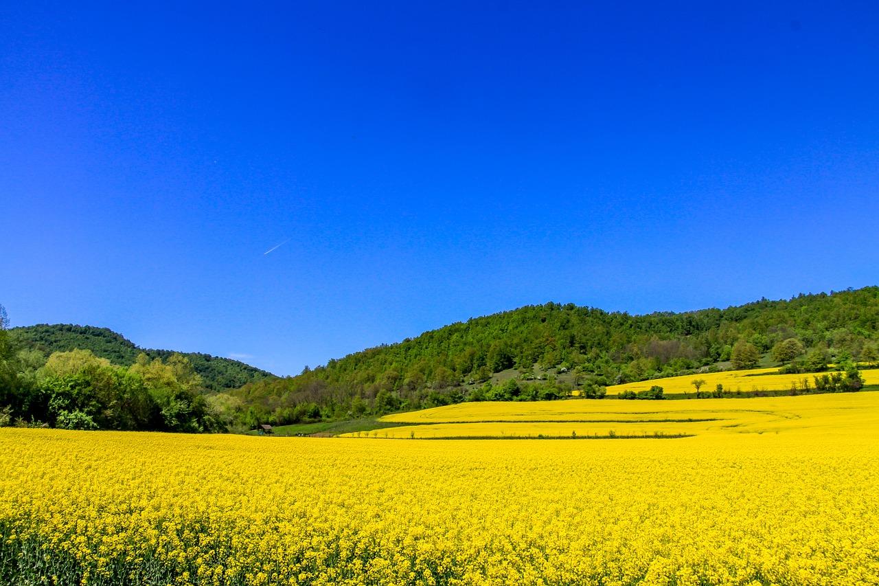 nature-בולגריה