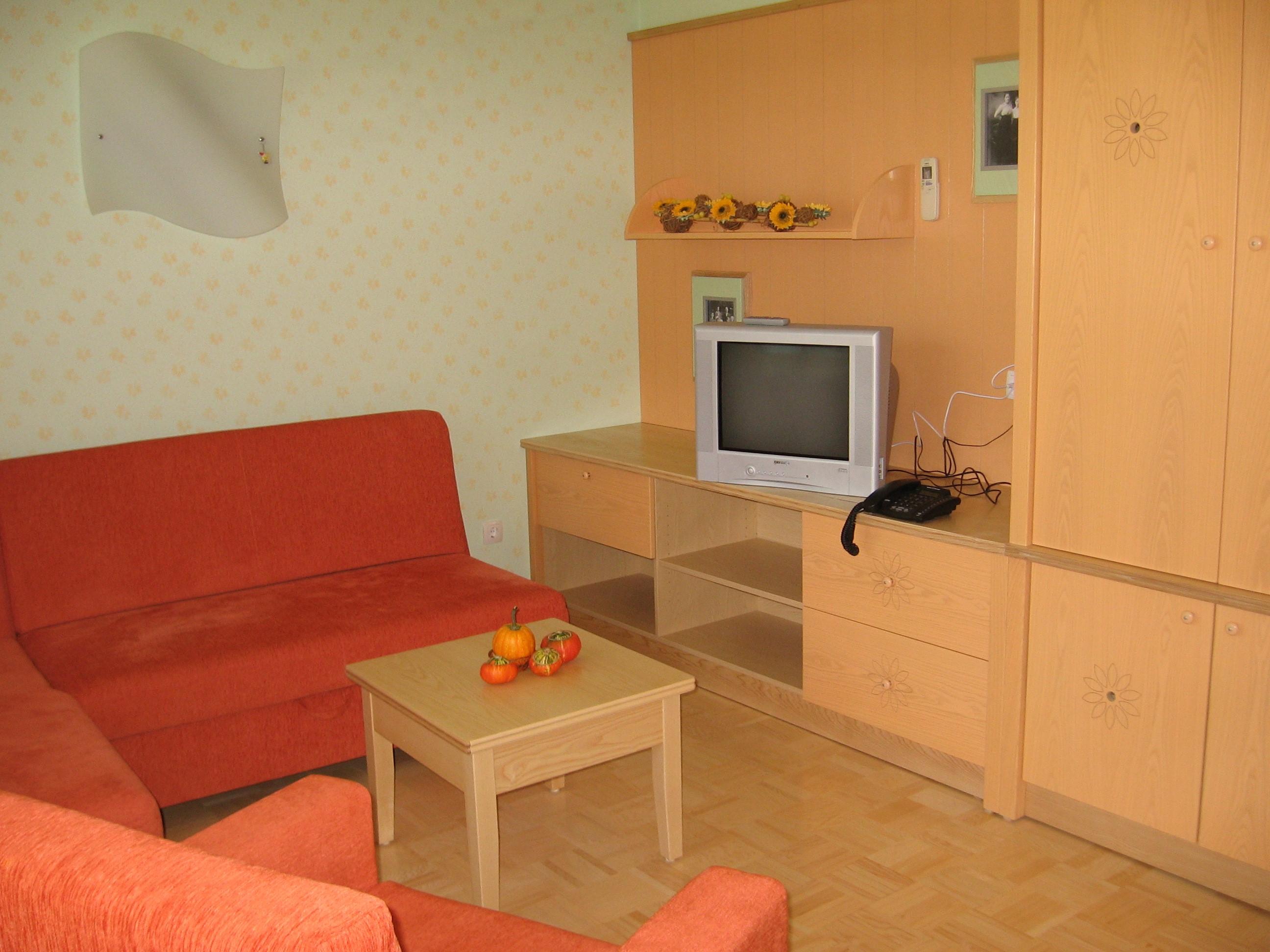 Apartment - Living room 1