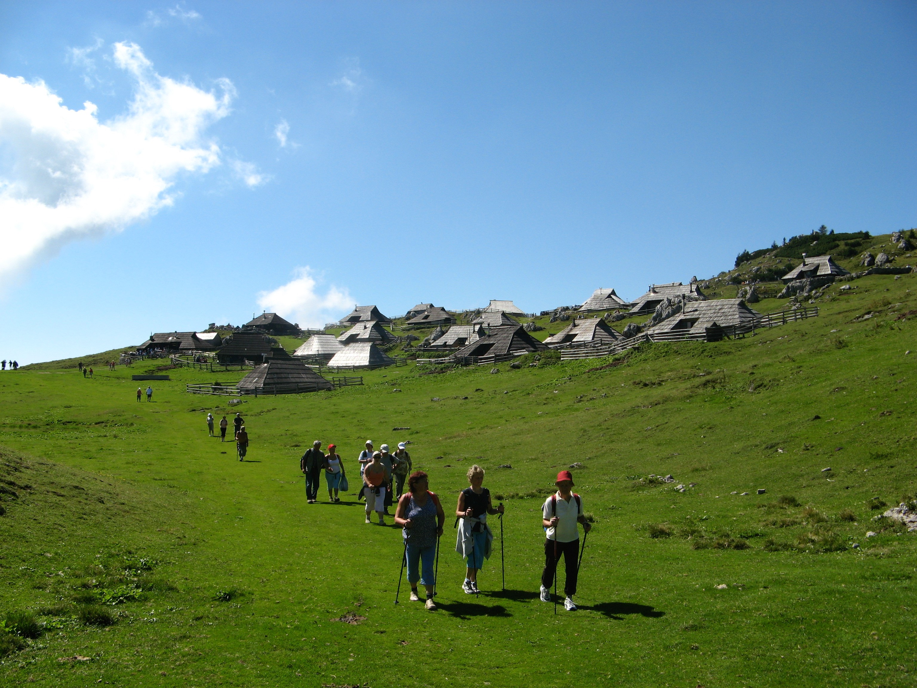Surroundings - Velika planina