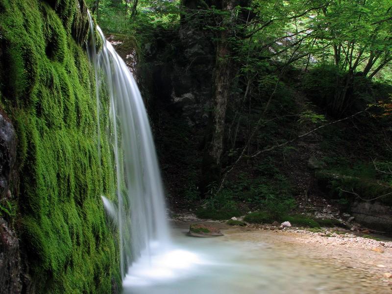 Surrounding - Bistrica