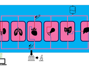 バイオリアクターとは? 細胞培養から再生医療までメーカーが解説します