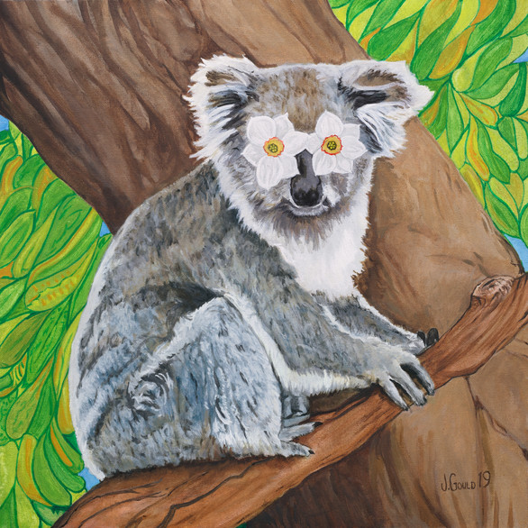 Flower Power Koala