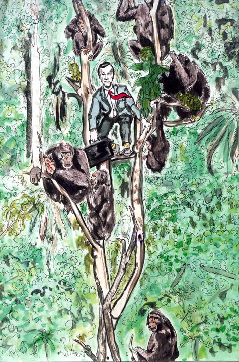 monkeytree.jpg