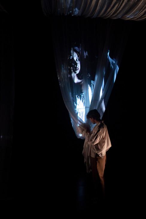 Ophelia - Video Installation