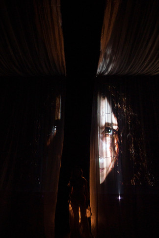 Ophelia - Video Installation