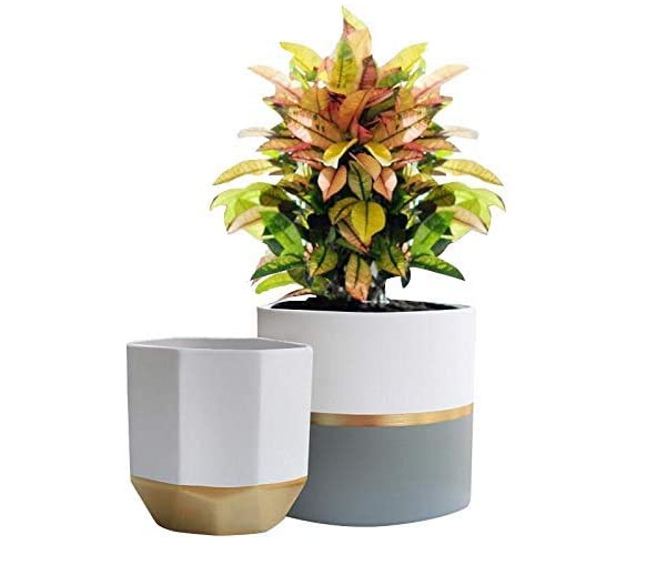 Ceramic Stripe Planters Set of 2