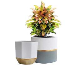 Ceramic Stripe Planters Set of 2