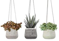 Hanging Planter Set of 3