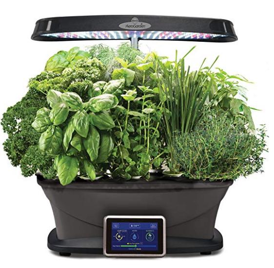 Herb Garden System