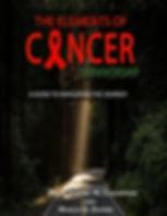 kindle The elements of cancer survivorsh