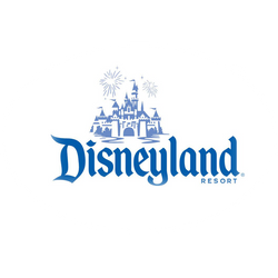 Disneyland DJ