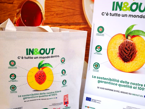 Apo Conerpo vede il successo nel panorama europeo grazie al progetto IN&OUT
