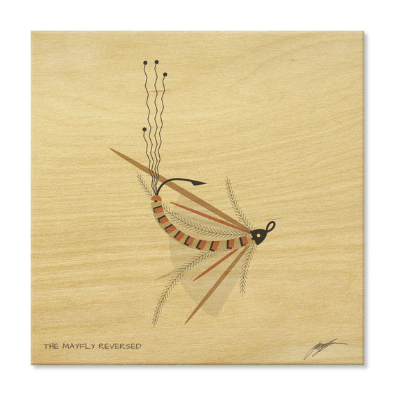 The Mayfly Reversed