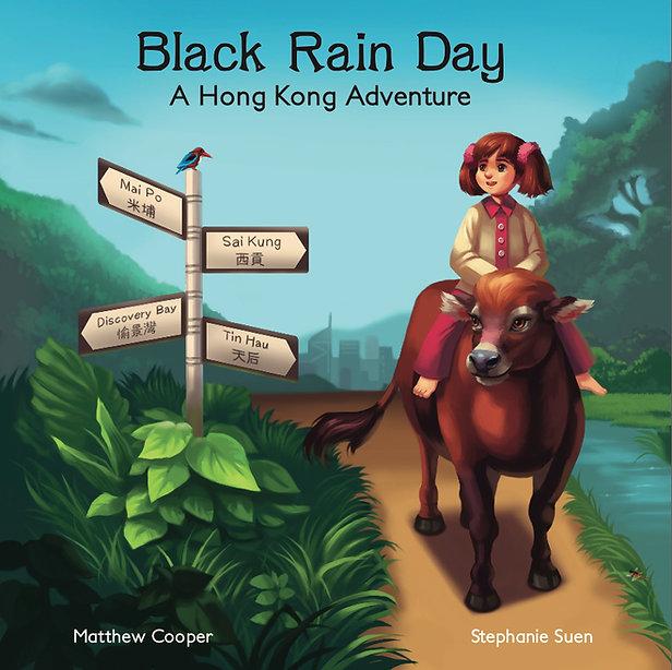 Black Rain Day book cover