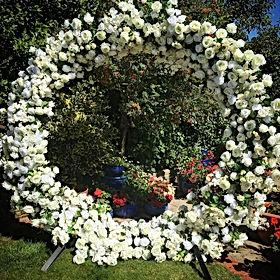 Floral Moongate.jpg