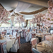 PINK BLOSSOM ROOM BY PETER ANSLOW PHOTOG
