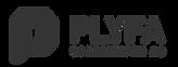 plyfa_logo.png