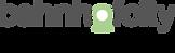 BAU_Logo_14.06.2018_Lay.png