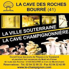 cave bourre.jpg