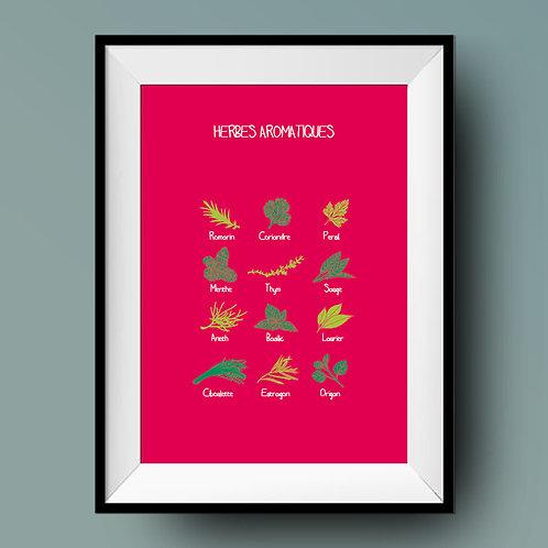 Affiche de cuisine / Herbes aromatiques