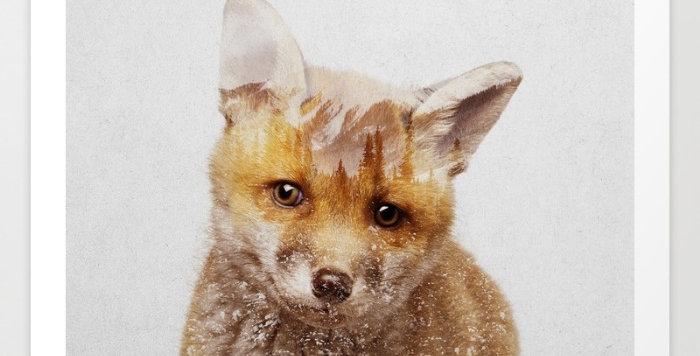 Fox Cub - Andreas Lie
