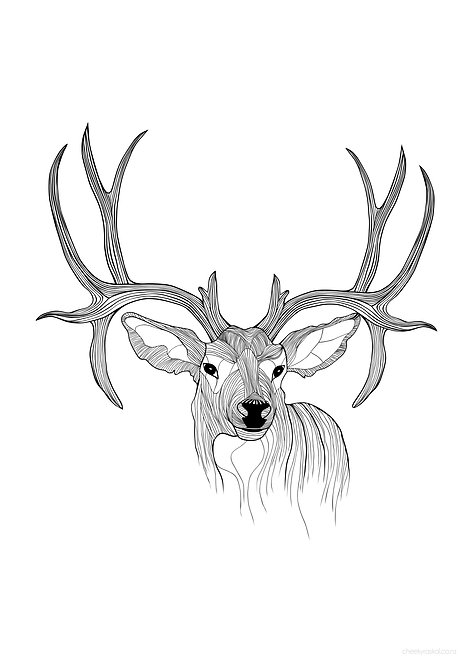 Stag - Download & Print