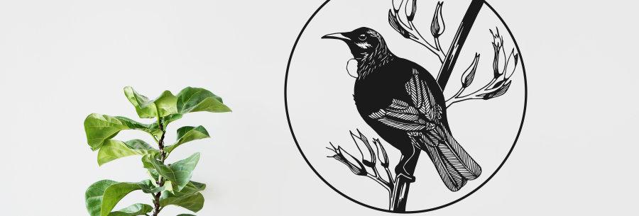New Zealand Tui Bird Decal Round