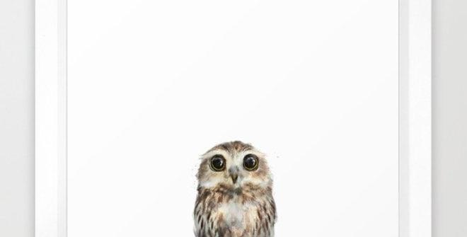 Little Owl - Amy Hamilton FRAMED print
