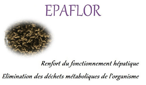 esprit horse epaflor flore intestinale intestin chien chat phyto