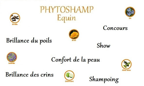 esprit horse phytoshamp shampoing beauté poils crins concours chevaux phyto