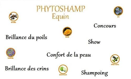 esprit horse phytoshamp shampoing beauté poils crins concours chevaux phyto