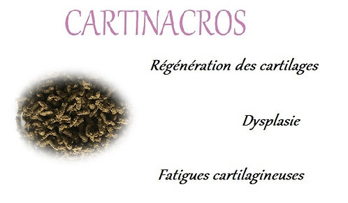 esprit horse cartinacros articulation articulaire chien chat phyto