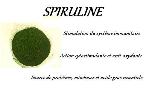 spiruline phyto plantes esprit horse algue marine cheval