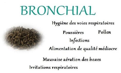 esprit horse bronchial toux poumons poussiere respiration chevaux phyto
