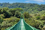 Treetop-Walkways-Selvatura-Park-9.jpg