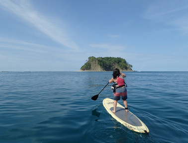 stand up paddle ocean.jpg