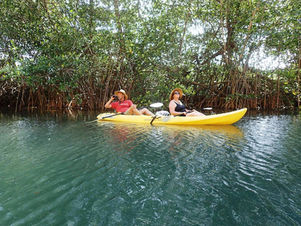 Samara-Wildlife-Mangrove-Kayak-Tour-1.jp