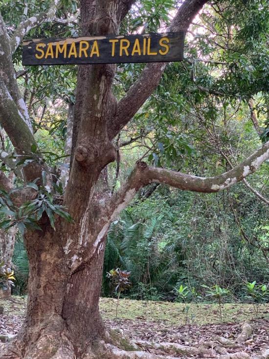 Samara_Trails_Sign-768x1024 (1).jpg