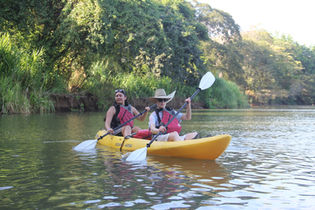 Wildlife & Mangrove Kayak 3.jpg