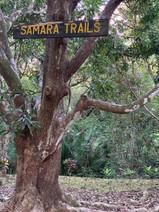 Samara_Trails_Sign-768x1024.jpg