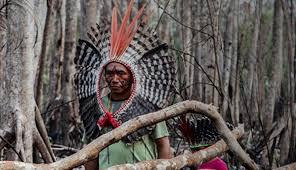"""Irmã Eleanor Snyder reflete sobre o relatório """"Violência Contra os Povos Indígenas no Brasil"""" - 2019"""