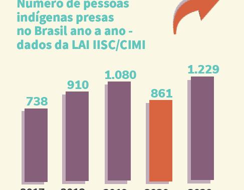 ADDIISC realiza pesquisa com intuito de monitorar dados públicos acerca da prisão de povos indígenas