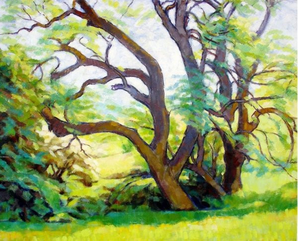 TREE STUDY IN SPRING