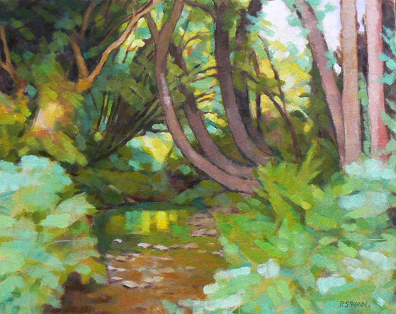 TREES AND STREAM