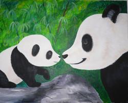 Pandas $250
