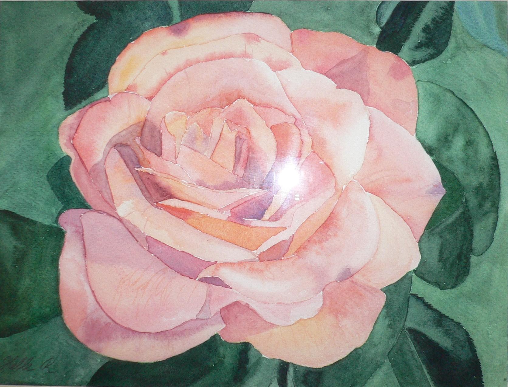 Rose $ 150