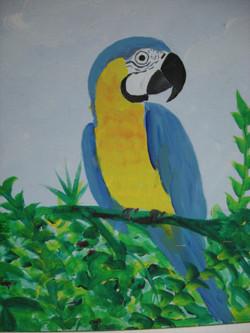Parrot #4