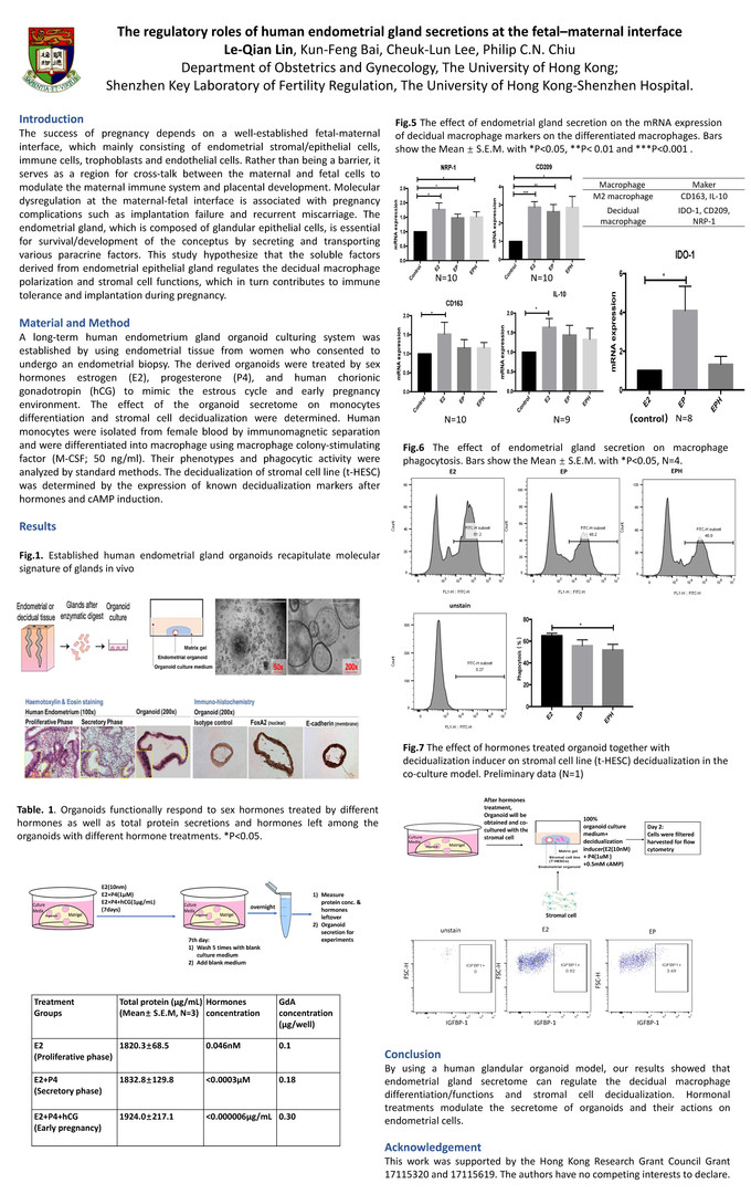 P04 The regulatory roles of human endometrial gland secretions at the fetal- maternal interface